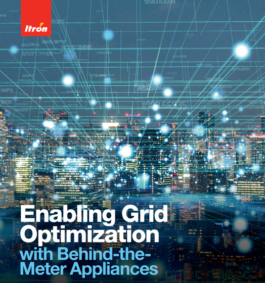 DEM Grid Optimization Brochure Thumb