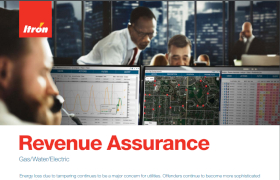Revenue Assurance Brochure